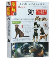【图解速查狗】狗(认识你喜欢的宠物)养狗的书籍宠物狗训狗书籍图解版