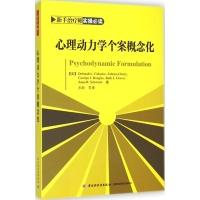 心理动力学个案概念化等心理学书籍