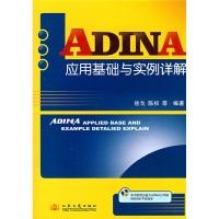 ADINA应用基础与实例详解(附光盘)