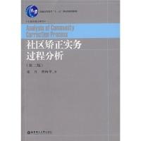 社区矫正实务过程分析(第2版)