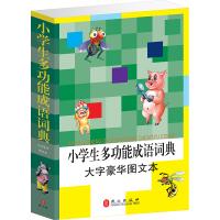 小学生多功能成语词典(大字豪华图文本平装)