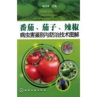 番茄、茄子、辣椒病虫害鉴别与防治技术图解