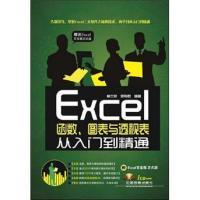 Excel函数、图表与透视表从入门到精通(附光盘1张)
