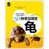 50种常见观赏龟