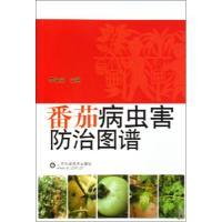 番茄病虫害防治图谱李金堂正版书籍科技