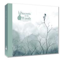 幾米笔记本:远方(正版授权幾米精装笔记本《森林里的秘密》系列)