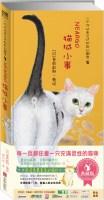 一个你从未见过的奇幻国度:猫城小事(典藏版)