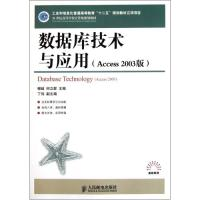 数据库技术与应用Access2003版21世纪高等学校计算机规划教材/高校系列