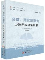 分离、同化或融合:少数民族政策比较