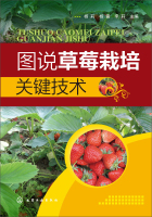 图说草莓栽培关键技术