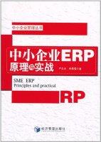 中小企业管理丛书:中小企业ERP原理与实战