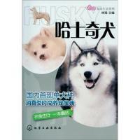 宠尚生活系列:哈士奇犬