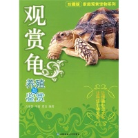 观赏龟养殖与鉴赏