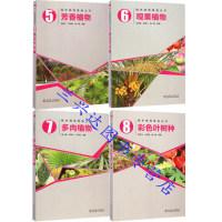 区域包邮园林植物图鉴丛书:多肉植物+芳香植物+观果植物+彩色叶树种4本