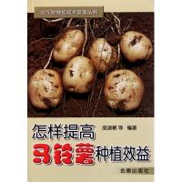 怎样提高马铃薯种植效益庞淑敏正版书籍