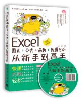 Excel图表·公式·函数·数据分析从新手到高手(超值全彩版附光盘)