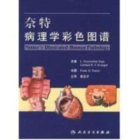 奈特病理学彩色图谱(翻译版)崔全才主译医学书籍