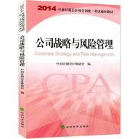 公司战略与风险管理经济书籍