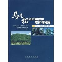 马尾松纸浆用材林培育与利用