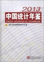 中国统计年鉴2013(附光盘1张)