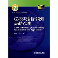 数字中国丛书:GNSS反射信号处理基础与实践