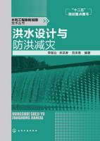 水利工程除险加固技术丛书:洪水设计与防洪减灾