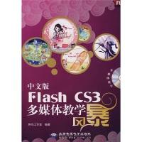 中文版FlashCS3多媒体教学风暴(附光盘)