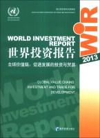世界投资报告2013·全球价值链:促进发展的投资与贸易