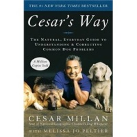 Cesar'sWay英文原版