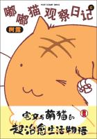 嘟嘟猫观察日记(6)