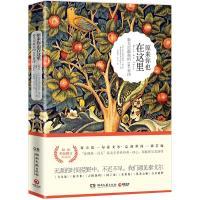 原来你也在这里:泰戈尔最美的100首诗(双语彩色图文典藏版)