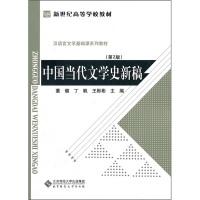 中国当代文学史新稿