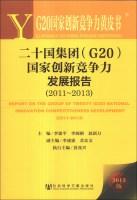 G20国家创新竞争力黄皮书:二十国集团(G20)国家创新竞争力发展报告(2011~2013)