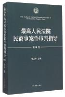 最高人民法院民商事案件审判指导(第2卷)