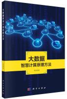 地理信息系统理论与应用丛书:大数据智慧计算原理方法