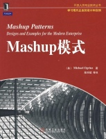 Mashup模式(开发人员专业人员技术丛书)美奥格林兹计算机与互联网书籍