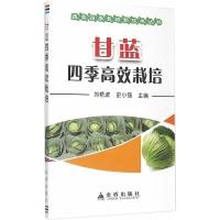 甘蓝四季高效栽培-蔬菜四季栽培新技术丛书
