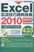 EXCEL2010实战技巧精粹辞典