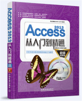 Access2013从入门到精通(超值视频版)(附光盘)
