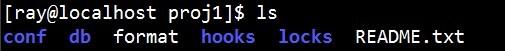 CentOS下搭建SVN服务器
